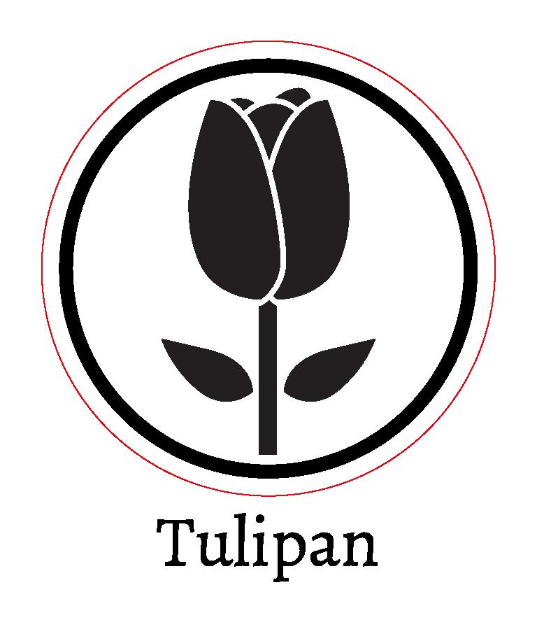 Tulipan-01